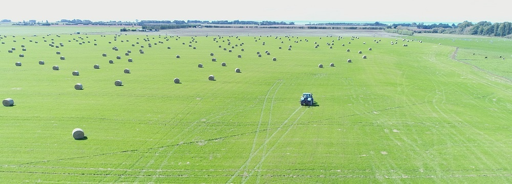 Hay Bales being taken off the paddock in South Canterbury