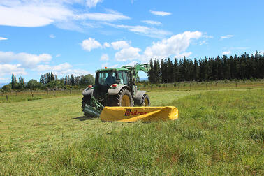 When to cut for best silage